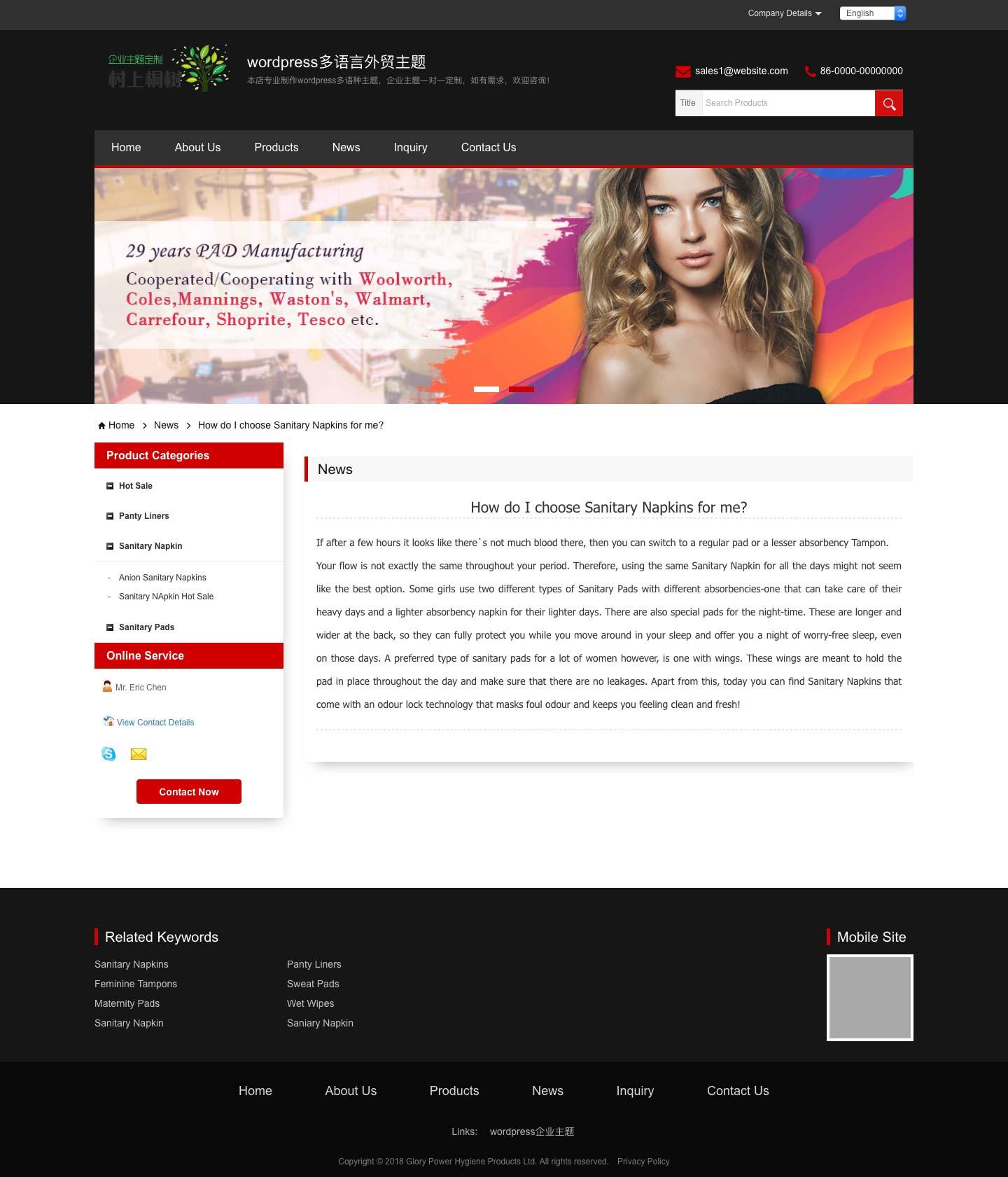 wordpress多语言主题,外贸多语言网站建设